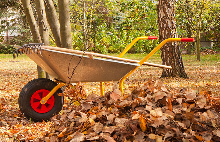 Fall home maintenance to get ready for winter